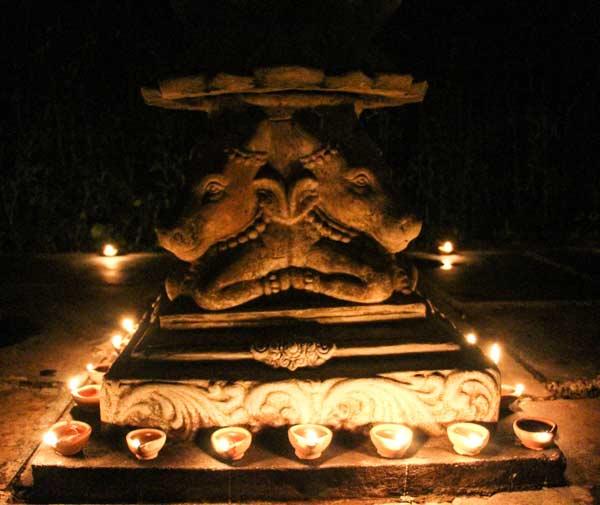 Tulsi altar for Diwali at swan yoga retreat