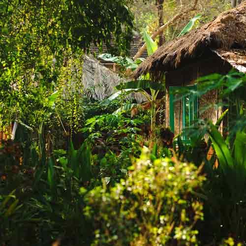 lust-green-cottage-goa