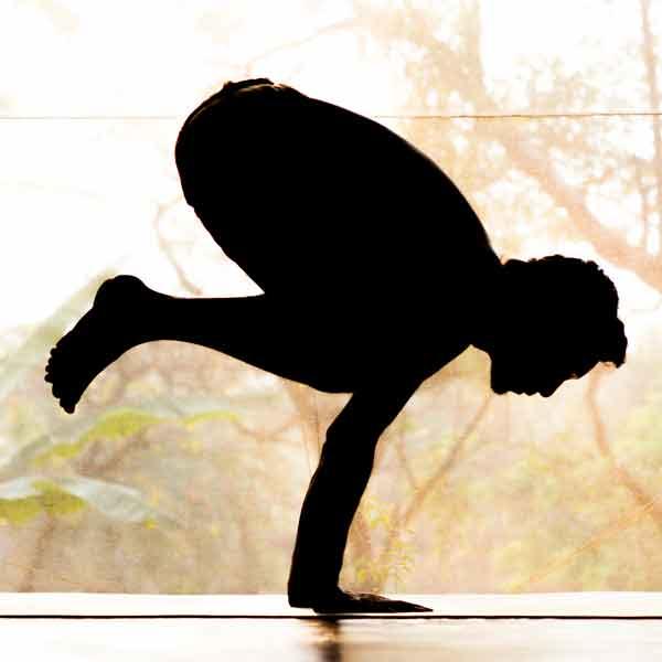 swan-yoga-holiday-intensive