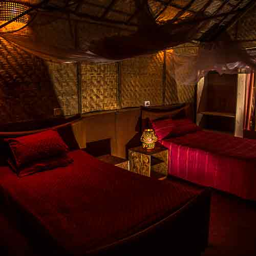 rooms at swan yoga goa