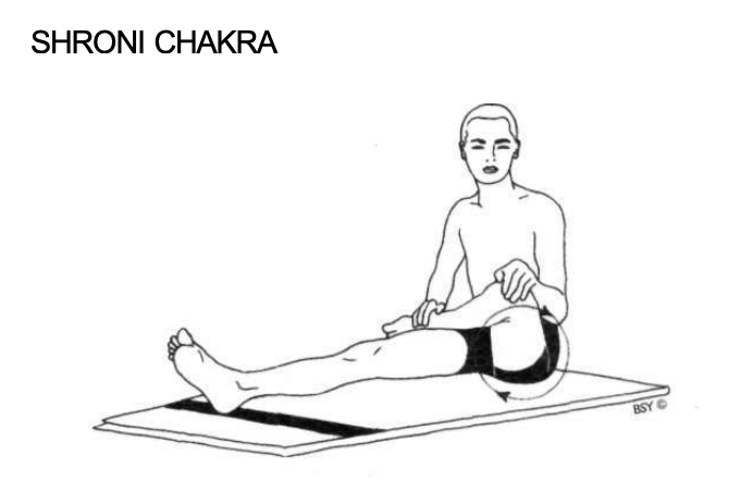 Shroni Chakra
